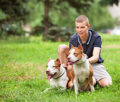 joyful-man-sitting-on-grass-with-dogs-546DYTN-1.jpg